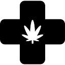 Marihuana Medyczne