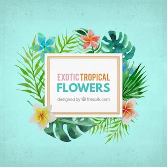 Akwarela egzotyczny kwiat etykieta