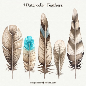 Akwarela Feather Collection