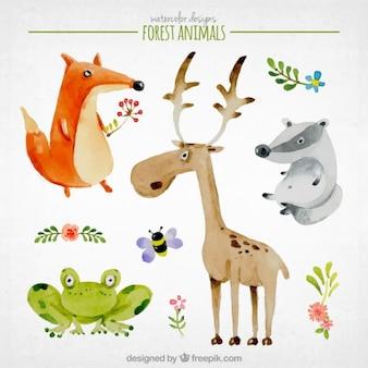 Akwarela miłe leśne zwierzęta