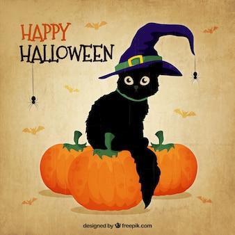 Czarny kot z kapelusz czarownicy na halloween
