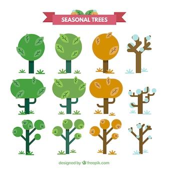 Drzewa sezonowych kolekcji