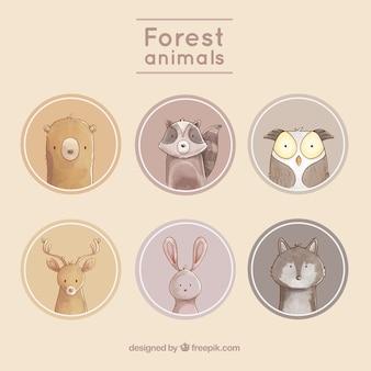 Etykiety miłych zwierząt z zaokrąglonymi środowisk