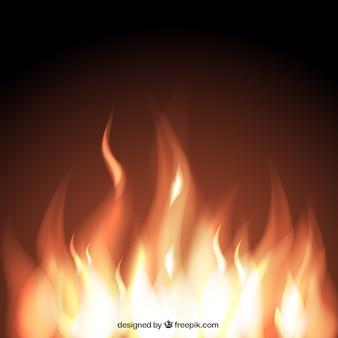 Flames w tle