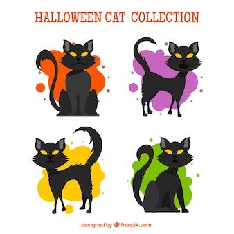 Halloween kotów z creepy stylu