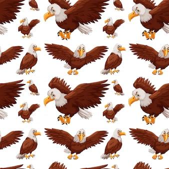 Jednolite tło z orły latające