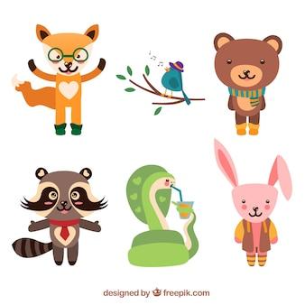 Kolekcja ślicznych zwierząt