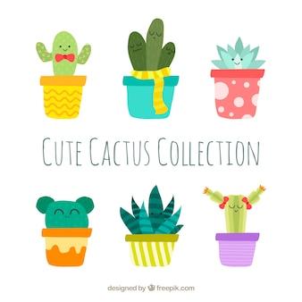 Kolekcja cute kaktusa
