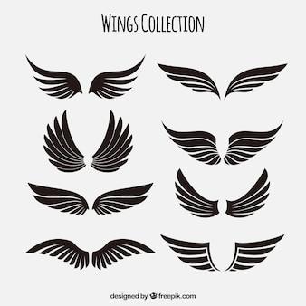 Kolekcja czarnych skrzydeł