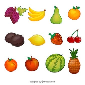 Kolekcja ilustracje z owocami