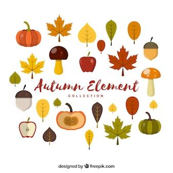 Kolekcja jesiennych elementów z warzywami i owocami