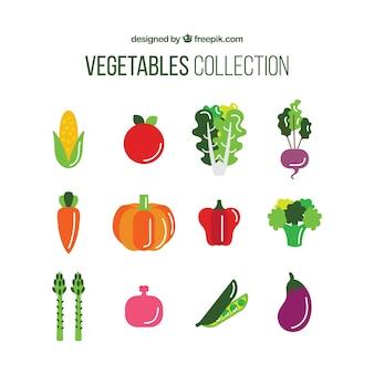 Kolekcja pożywne warzywo