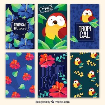 Kolekcja tropikalnych kart z sowa i kwiatów