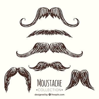 Kolekcja wąsów szkicu