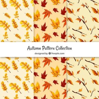 Kolekcja wzorów jesieni
