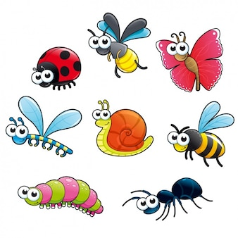 Kolorowa kolekcja owadów
