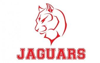 Logo jaguary