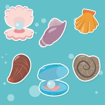 Muszle morskie