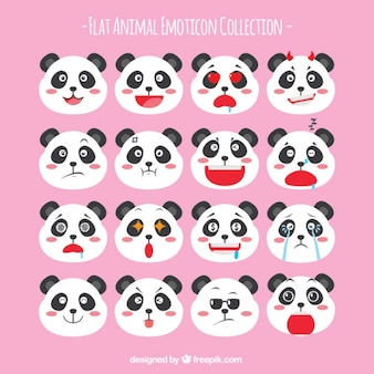 Panda Bear kolekcja emotikon