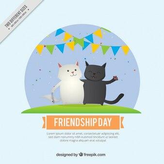 Piękne koty tło friedship dzień
