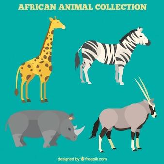 Piękne zwierzęta afrykańskie ustawione w płaskiej konstrukcji