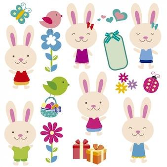 Pola Cute królików