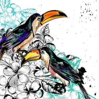 Ręcznie malowane tła tukany