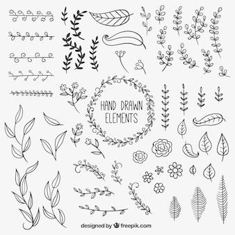 Ręcznie rysowane elementy naturalne dekoracje