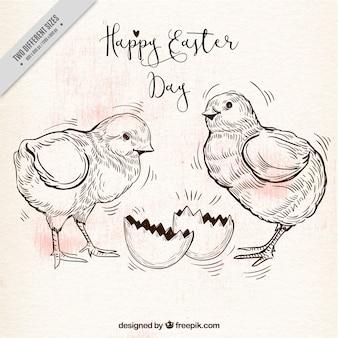 Retro tła z dwóch piskląt na Wielkanoc dnia