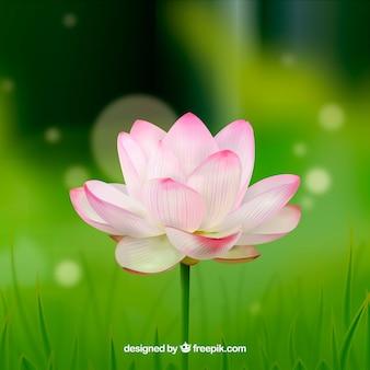 Rozmyte tło z ładny kwiat w realistycznym stylu