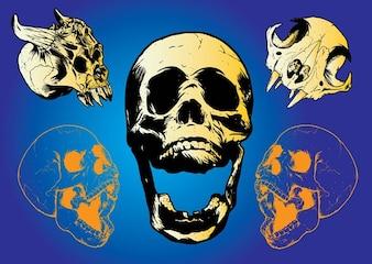 straszne czaszki