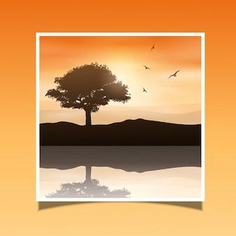 Sylwetka drzewa przed zachodem słońca niebo odbicie w wodzie