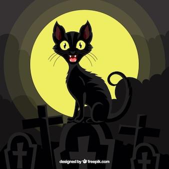 Tło czarnego kota na cmentarzu