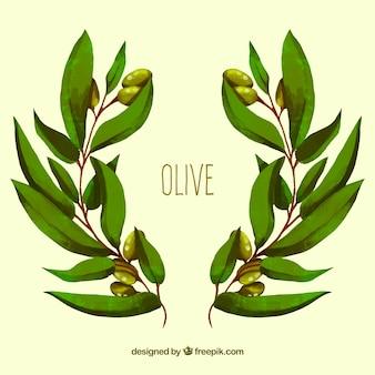 Tło z gałązkami oliwnymi w stylu akwareli