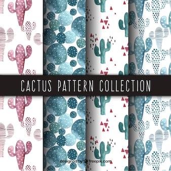 Wzory akwarelowe z pięknym kaktusem