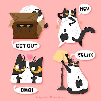 Zabawne opakowanie naklejek dla kotów