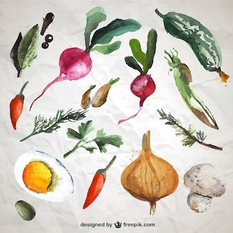 Zbiór warzyw akwarela