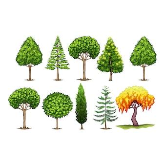 Zielone drzewa kolekcji