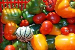 świeże warzywa, świeże