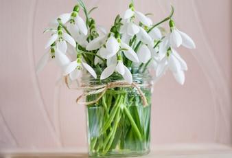 Białe kwiaty w wazonie z wodą