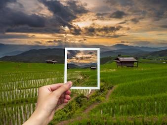 Dłoń trzymająca Instant zdjęcie i widok ryżu zachód słońca.
