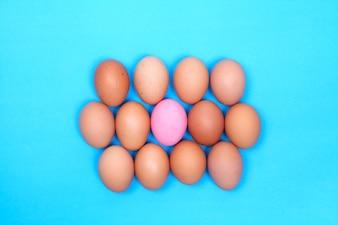 Jeden zachowany jajko na niebieskim tle z kurczaka jajko dokoła.