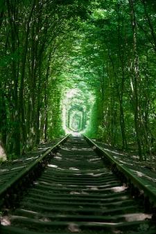 Krajobraz podróży ukraina miłości kolejowej