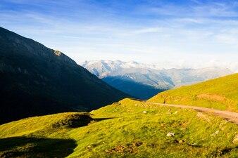 Letni widok na łąkę góralską