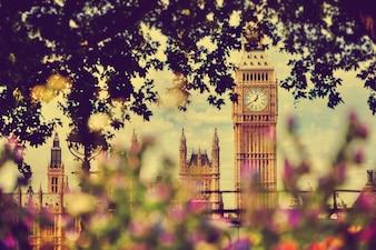 Londyn widok przez drzewa