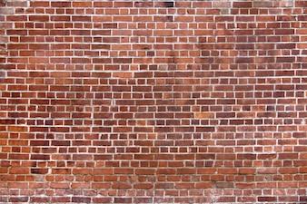 Mur z cegły nowych