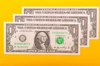 Oszczędności banknotów dolarowych