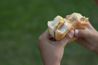 Przeznaczone do walki radioelektronicznej gospodarstwa strony Hamburger do jedzenia, pojęcie żywności