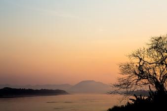 Rano słońce krajobraz z drzewa i rzeka