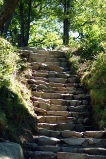 schody natury